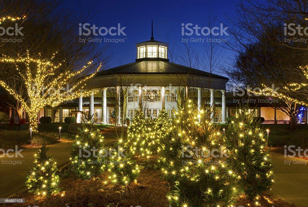 Holiday Lights royalty-free stock photo