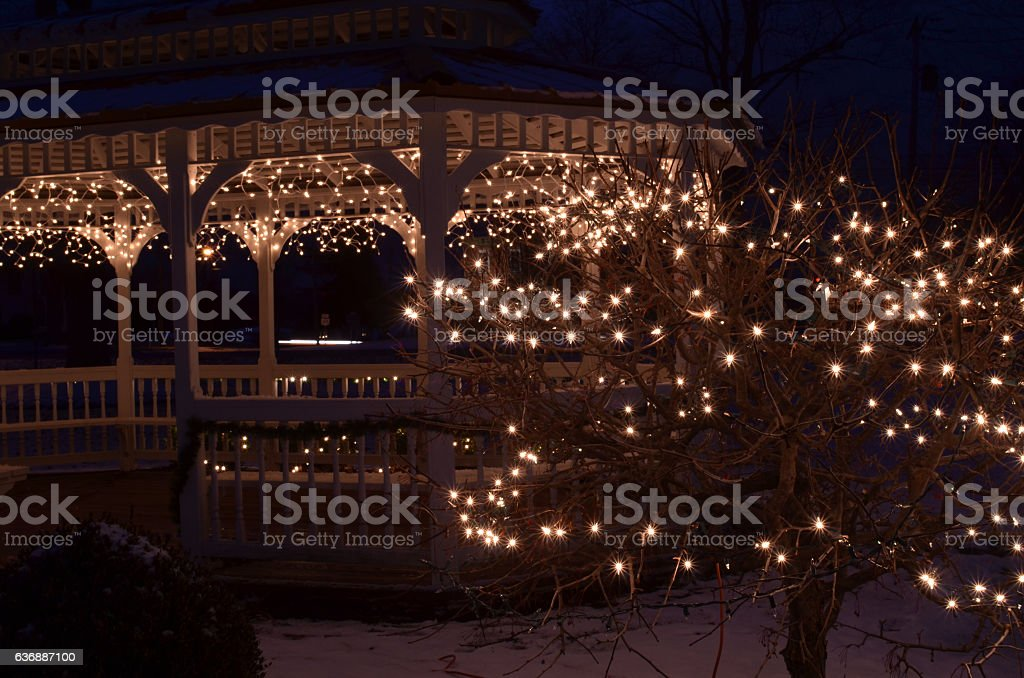 Holiday Night Lights Gazebo And Bush Stock Photo Download Image Now