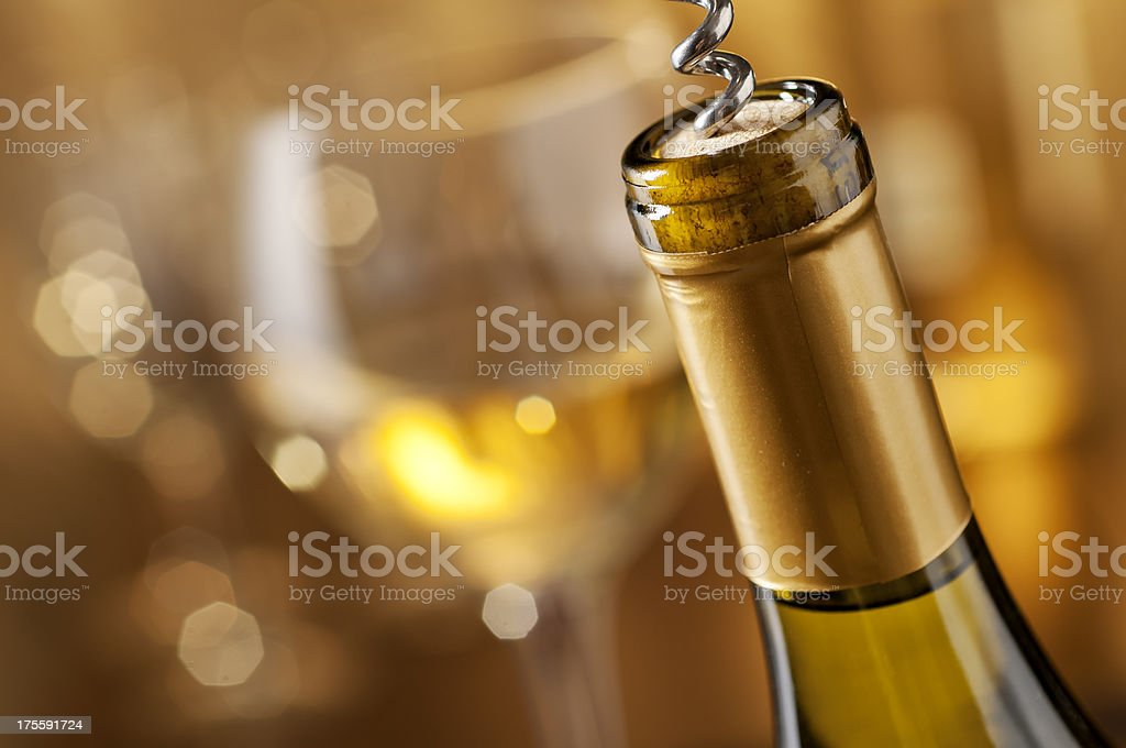 Holiday Party royalty-free stock photo