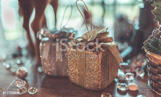 948081716 istock photo Holiday Photos 811733608