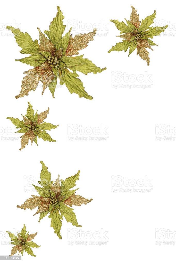 Holiday Poinsettia Border Frame royalty-free stock photo