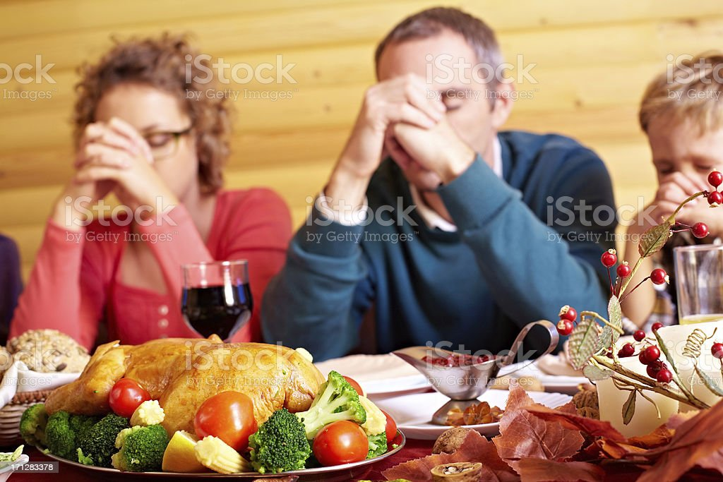 Holiday supper royalty-free stock photo