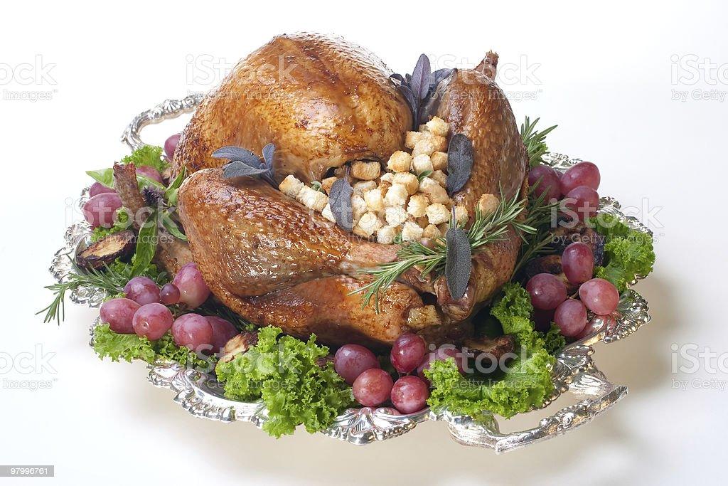Holiday turkey on white royalty free stockfoto