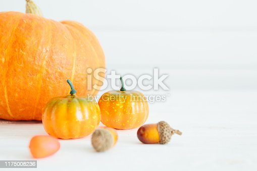 Holidays image of Halloween. Pumpkins on white planks Organic food and healthy food concept Thanksgiving and Halloween concept.