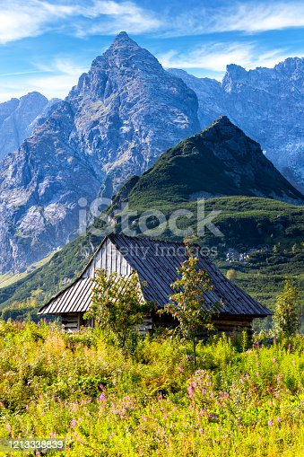 1130859000 istock photo Holidays in Poland - Gasienicowa Valley and Koscielec summit in the Tatra Mountains 1213338839