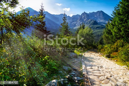 1130859000 istock photo Holidays in Poland - Path leading to the  Gasienicowa Valley in Tatra Mountains 1211854702