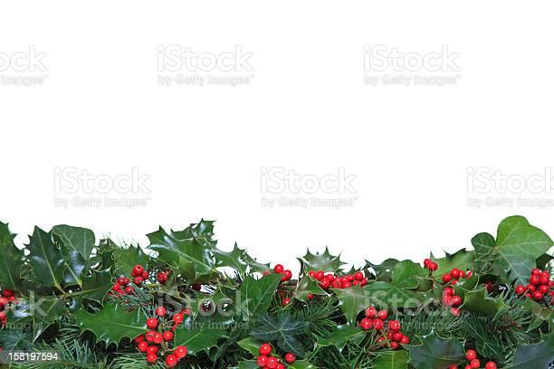 Holly and ivy footer picture id158197594?b=1&k=6&m=158197594&s=612x612&h=l82nhfbbkeaoprumtacavjqpt3deo xjvoteaghwymq=