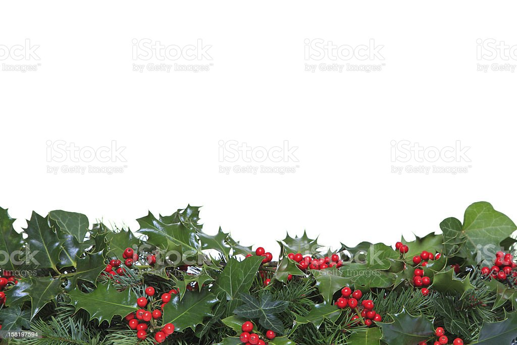Holly and Ivy footer stock photo