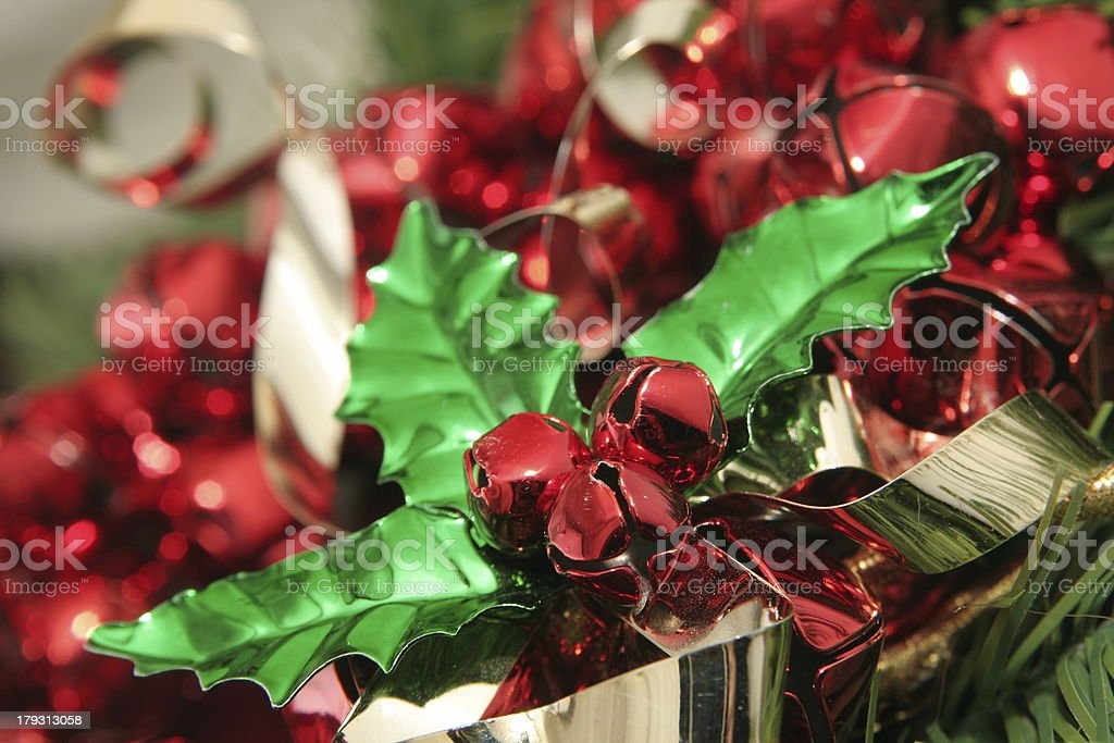 Holly and Ivy royalty-free stock photo