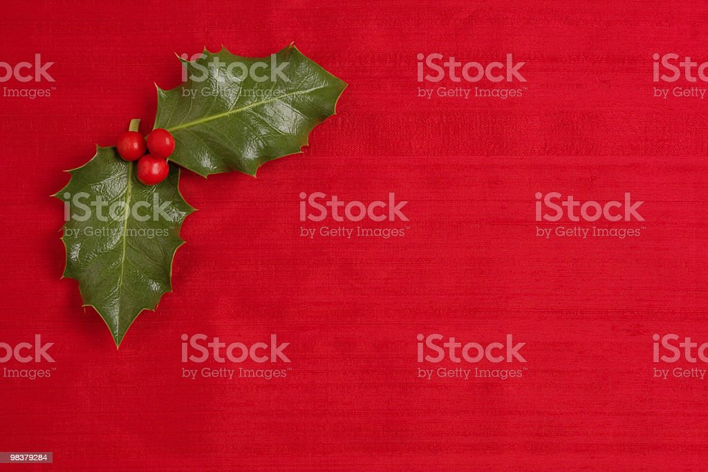 Holly & berries background royalty-free stock photo