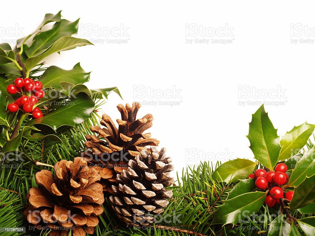 holly pine cone border royalty-free stock photo