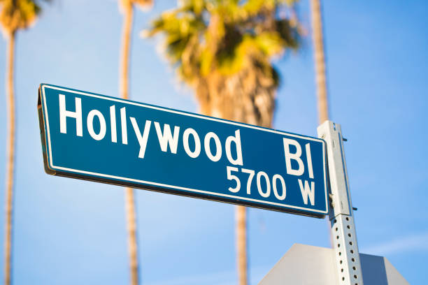 Hollywood Blvd A stock photo of the Hollywood Boulevard (Hollywood Blvd or Hollywood Bl) road sign in Los Angeles, California. Photographed with Tall palm trees contrasted against a blue sunny sky. Photographed using the Canon EOS 1DX Mark II. walk of fame stock pictures, royalty-free photos & images