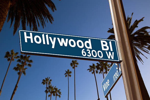 Hollywood Boulevard with  sign illustration on palm trees Hollywood Boulevard with  vine sign illustration on palm trees background. Photomount hollywood boulevard stock pictures, royalty-free photos & images