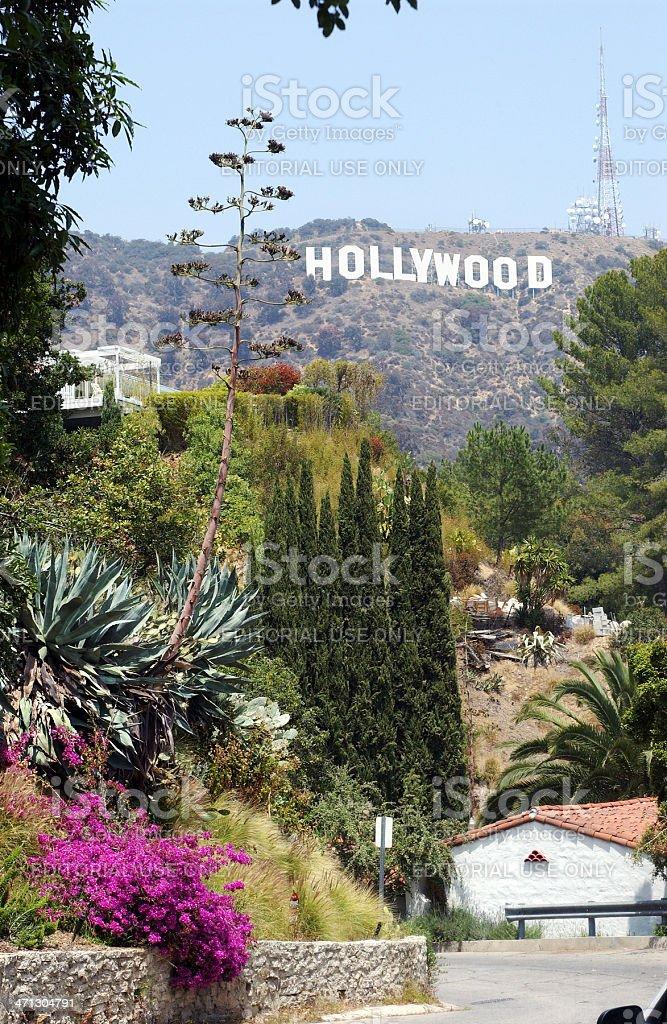 Hollywood Hills royalty-free stock photo