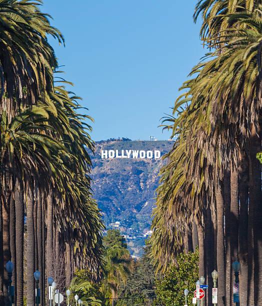 hollywood - hollywood sign bildbanksfoton och bilder