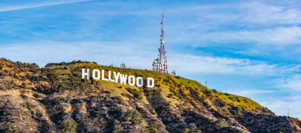 hollywood-skylten och hund park - hollywood sign bildbanksfoton och bilder