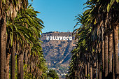 istock Hollywood Sign from Central LA 1126093641