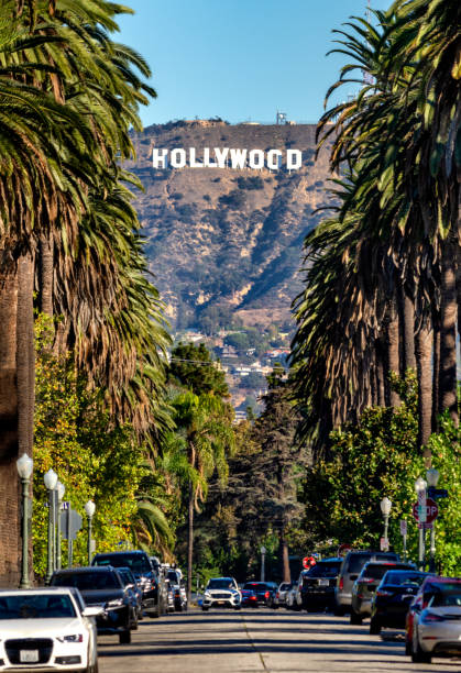 hollywood-skylten från centrala la - hollywood sign bildbanksfoton och bilder