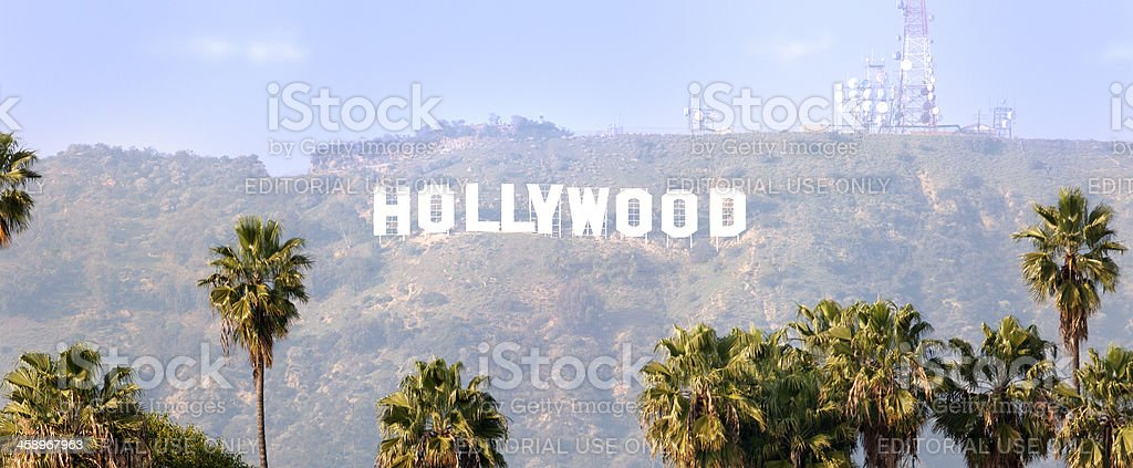 Hollywood Sign with Palm trees stock photo