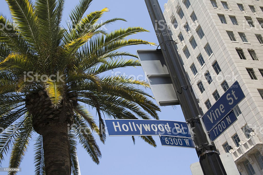 Hollywood & Vine street sign with palm tree and building royalty-free stock photo