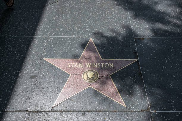 hollywood walk of fame. goldsterne berühmter schauspieler - oscar filme stock-fotos und bilder