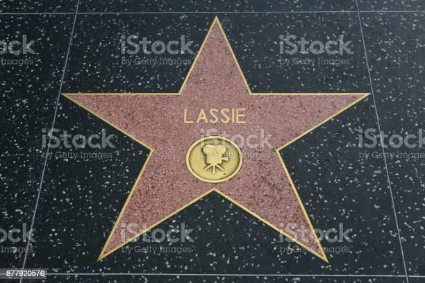 Hollywood walk of fame picture id877920576?b=1&k=6&m=877920576&s=612x612&h=9yxtzxzyba 68eskwbzsdw0rh09w5ao uawrwswnfn4=