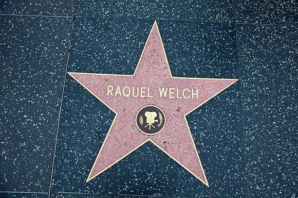 hollywood walk of fame star raquel welch - rachel welch stock-fotos und bilder