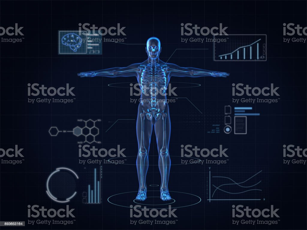 Hologram Human anatomy and skeleton stock photo
