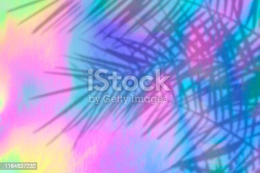 istock holographic background with palm leaves shadows 1164837232