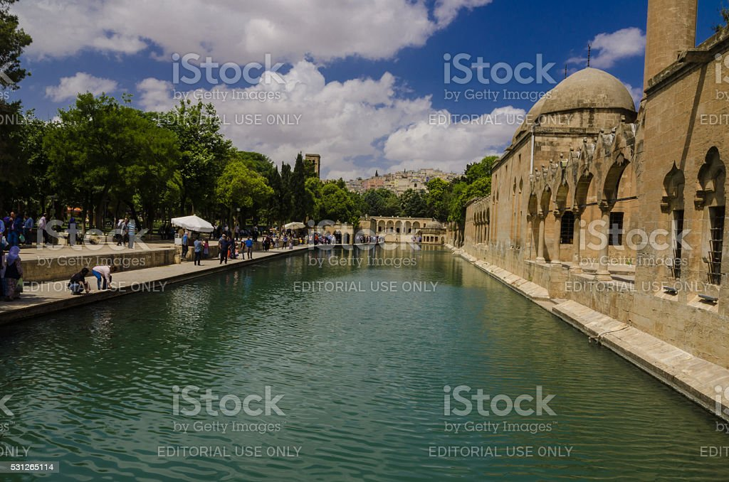 Holy fish lake, Urfa, Turkey stock photo