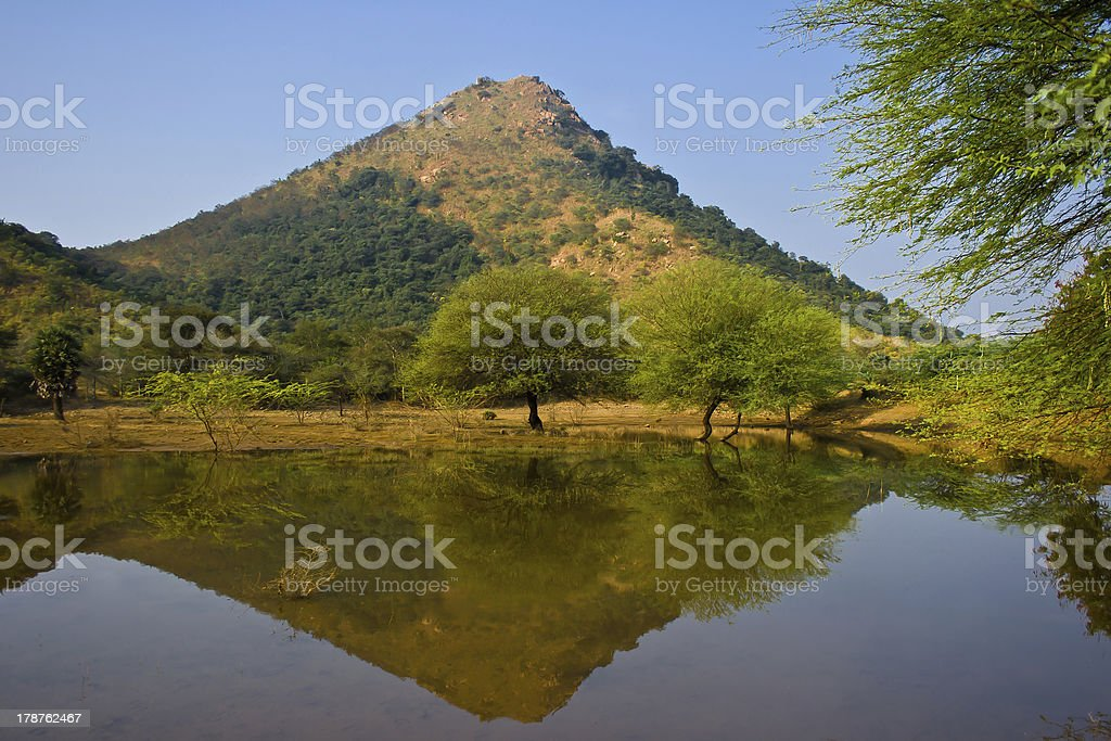 Holy indian mountain Arunachala reflected in the water stock photo
