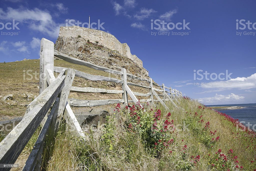 Holy Island Casle fence and red valerian stock photo