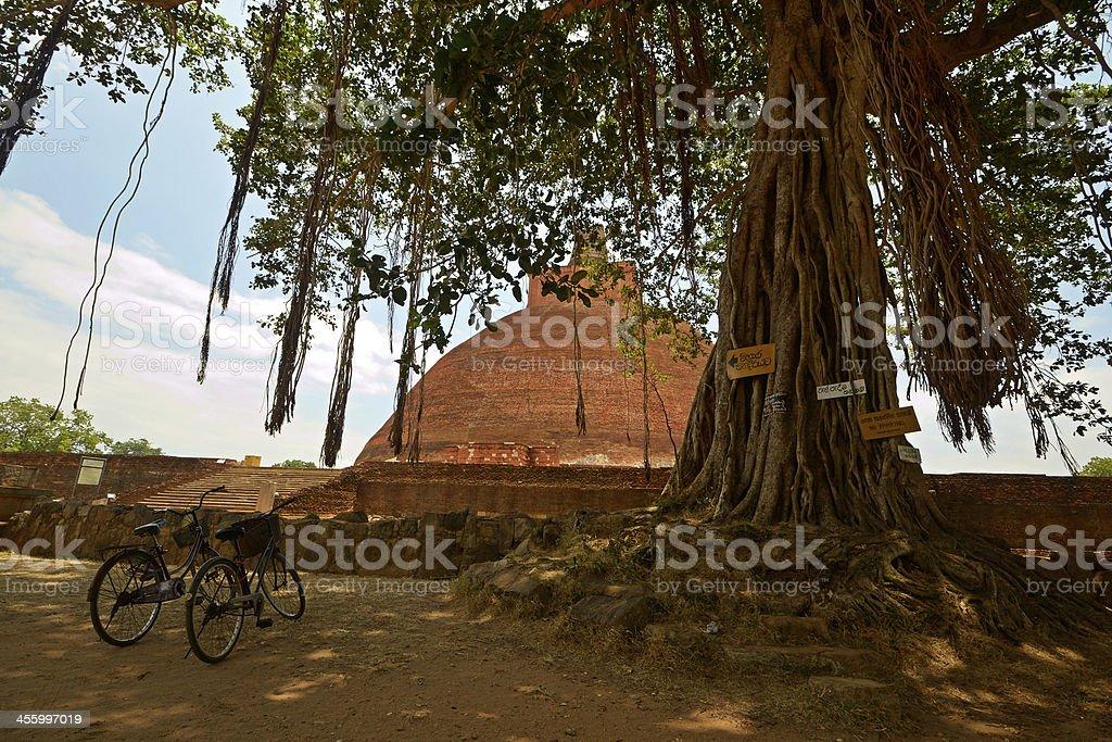 sites sacrés au Sri Lanka - Photo