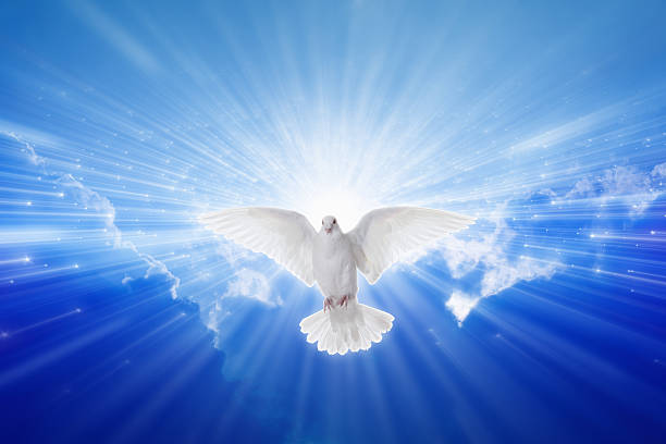 Holy Spirit came down like dove stock photo