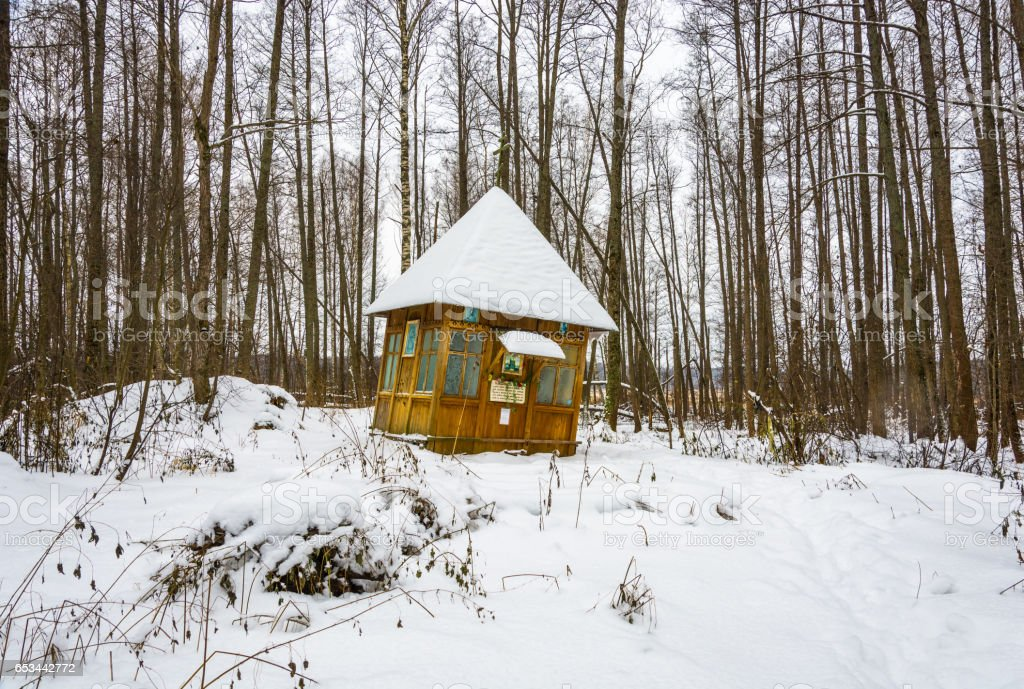 Holy spring of great Martyr Paraskeva in the winter woods. stock photo