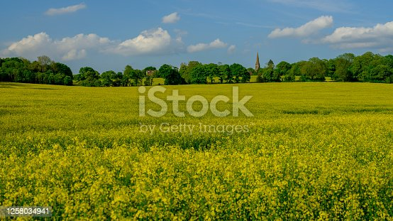 istock Holy Trinity Church, Privett in the South Downs National Park, UK 1258034941