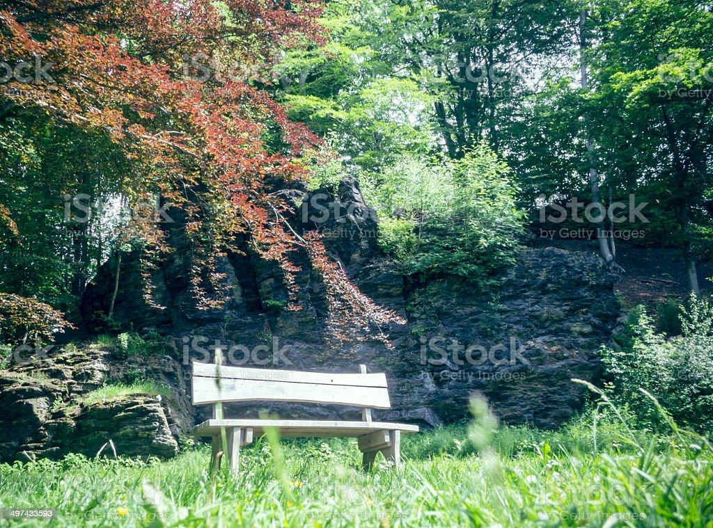 Holzbank im Park stock photo
