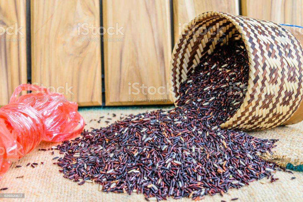 Hom Nil (black jasmine rice) in thailand stock photo