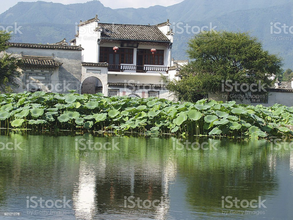 home and pond royalty-free stock photo