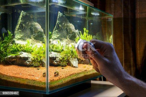 istock Home aquarium cleaning using magnetic fish tank cleaner 936339462