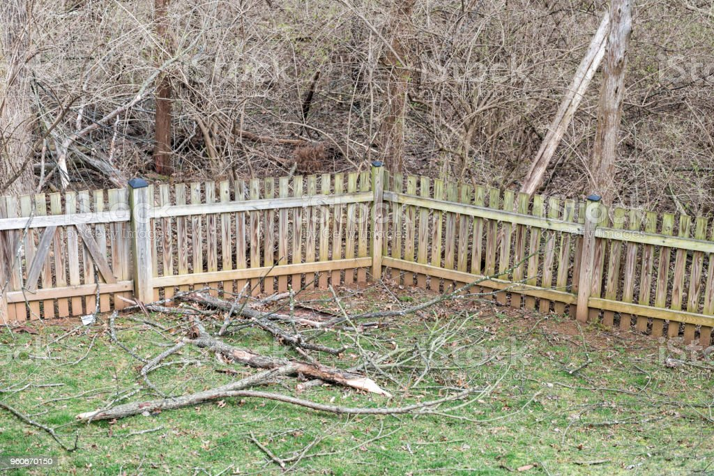 Home backyard wooden fence with many fallen tree branches after winter windy storm on grass with bare wood outside, nobody closeup stock photo