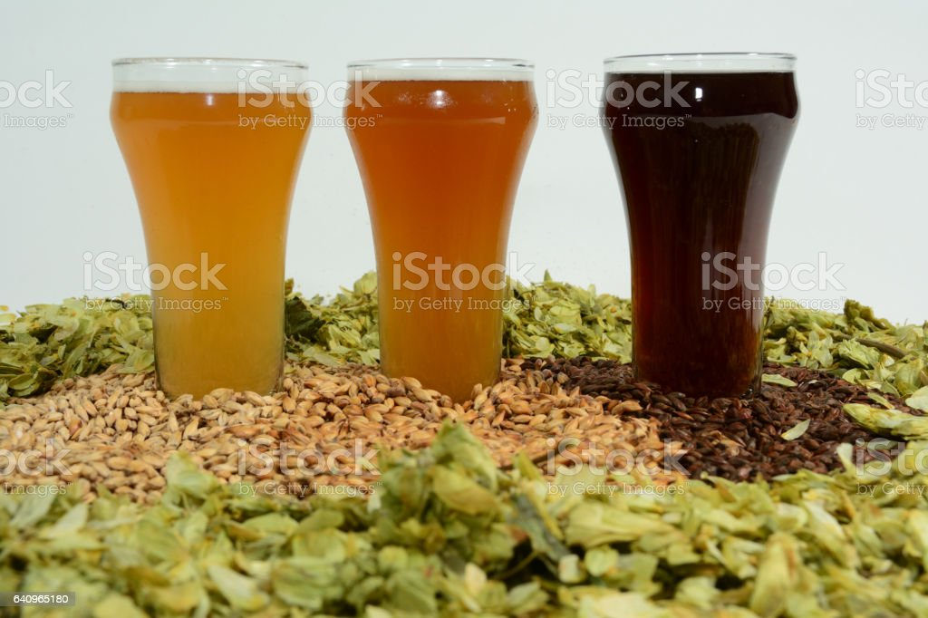 Home brew beer ingredients stock photo
