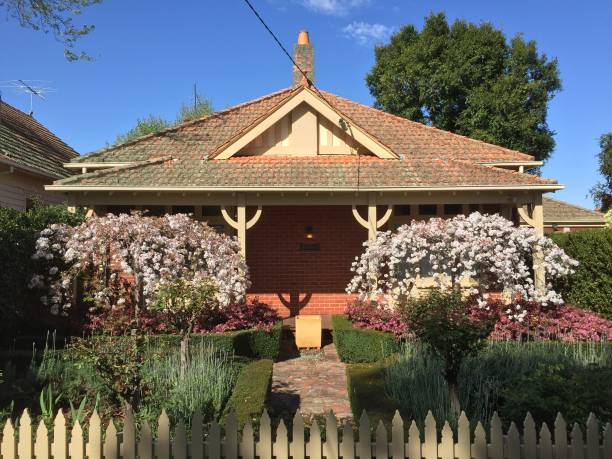 Home: charming century-old cottage with flowering formal front garden Home: formal front garden in century-old cottage with cherry blossom, flowering loropetalum and green hedge saxifragales stock pictures, royalty-free photos & images