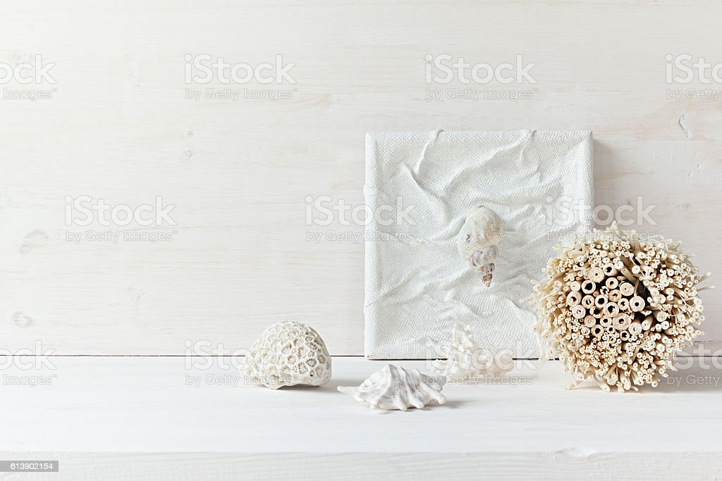 Home decor of shells and corals on white wooden background. stock photo
