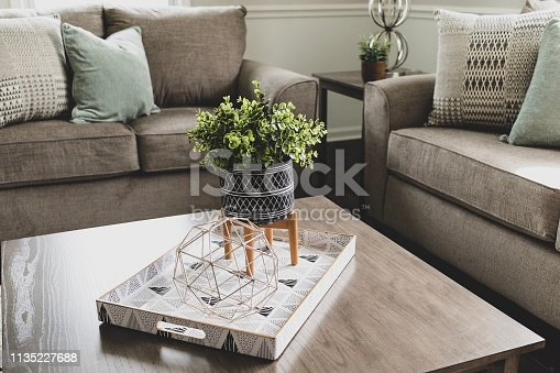 Modern home decor in trendy living room