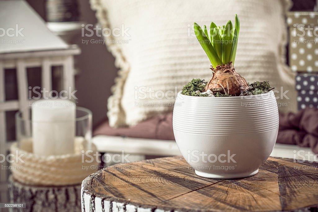Home decor stock photo