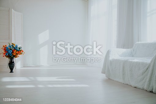 610958498 istock photo home decor white room with sofa and flowers in a vase 1223454344
