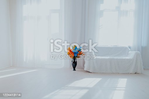 610958498 istock photo home decor white room with sofa and flowers in a vase 1224413114