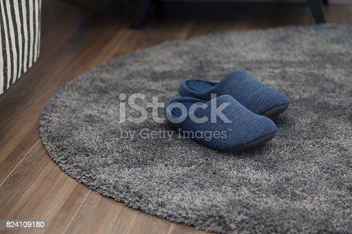 home flipper on carpet inside home room