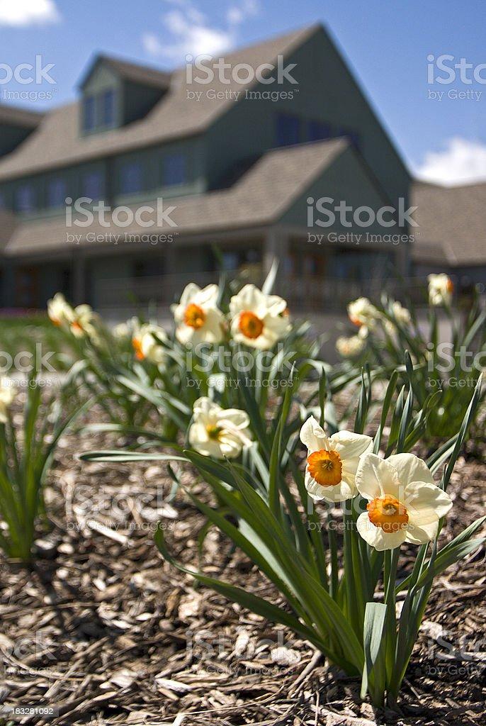 Home & Garden royalty-free stock photo